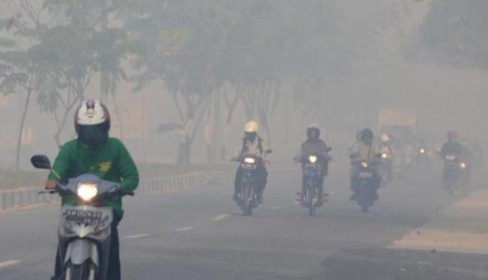 DPRD Minta Pemkab Pelalawan Tetapkan Status Darurat Bencana Kabut Asap