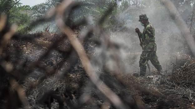 Berikut 3 Kabupaten di Riau yang Paling 'Babak Belur' Atas Bencana Karlahut