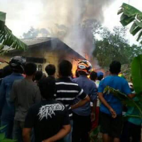 Dihajar Si Jago Merah, Dua Rumah di Sejangat Bukit Batu Rata