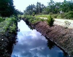 Desa Minta Pemkab Bangun Saluran Air Untuk Warga