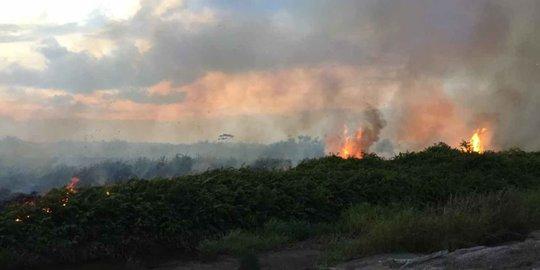 Delapan Hektare Lahan di Rupat Terbakar
