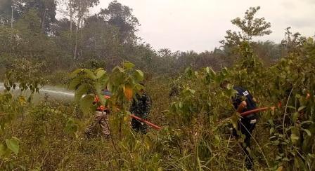 4 Hektar Lahan di Jalan Lingkar Pasirpangaraian, Rohul Hangus Terbakar