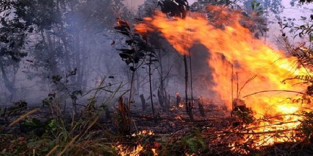 Polsek Tanah Putih Pantau Kawasan Bahaya Karhutla
