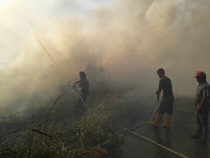 Polda Riau Dalami Kebakaran Lahan 2 Perusahaan di Rohul