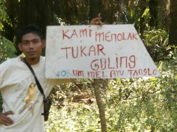 Anggota DPRD Riau Ini Tuding PT SLS Lakukan Tukar Guling Lahan di Luar HGU