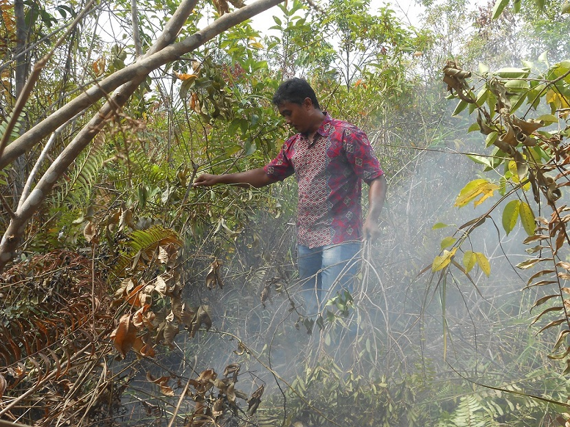 Review Izin Lingkungan dan Amdalnya, Lalu Cabut Izinnya Untuk Reforma Agraria