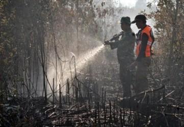 Selama Bertugas Cegah Karhutla Riau, 1.512 Personel Digaji Rp145 Ribu Perhari