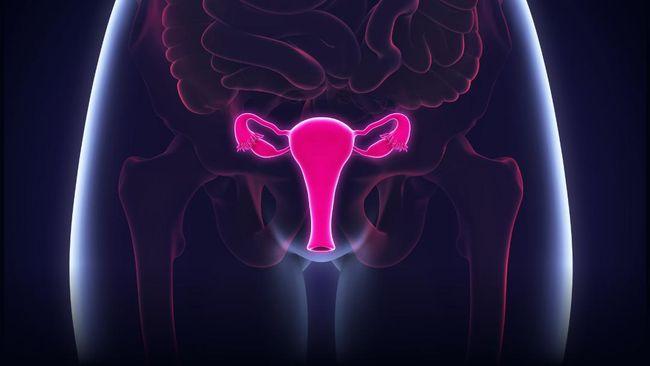 Catatan Pemberian Vaksin HPV untuk Cegah Kanker Serviks