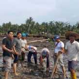 Tepati Janji, Dinas PU Bengkalis Bersama Rekanan dan Masyarakat Tanam Kembali Mangrove yang Rusak