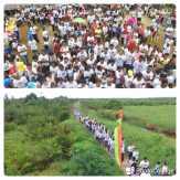 Ribuan Warga Bekawan, Inhil Ikuti Jalan Santai