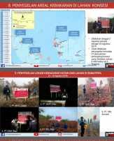 KLHK Segel Empat Konsesi di Riau, Termasuk PT RAPP