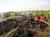 PT Tunggal Mitra Plantations Tunjukkan Komitmen dengan Padamkan Karlahut di Rokan Hilir