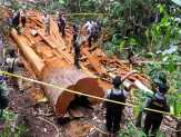 Ribuan Potong Kayu Ilegal Diamankan Polres Seruyan, Pelaku dalam Pengejaran