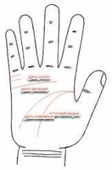 Apa Arti  ara Membaca Garis Tangan Seseorang