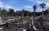 Polda Riau Pastikan Satu Perusahaan Tersangka Karhutla