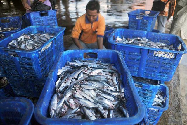 Akibat Gelombang Tinggi, Harga Ikan pun Melonjak