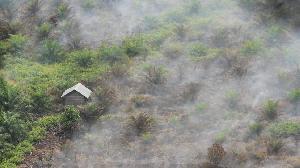 Aceh dan Riau dalam Ancaman Asap Kebakaran Hutan